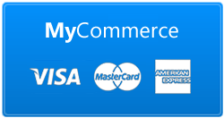 Alternative online credit card payment